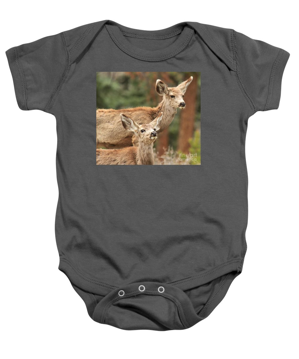 Rocky Mountain National Park Baby Onesie featuring the photograph Don't You Tell Mom by Adam Jewell