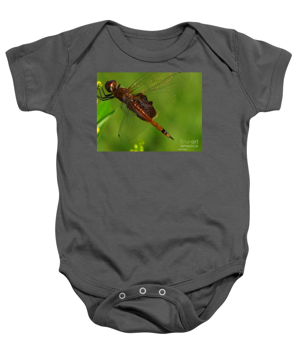 Art For The Wall...patzer Photographydragonfly Baby Onesie featuring the photograph Dragonfly Art 2 by Greg Patzer