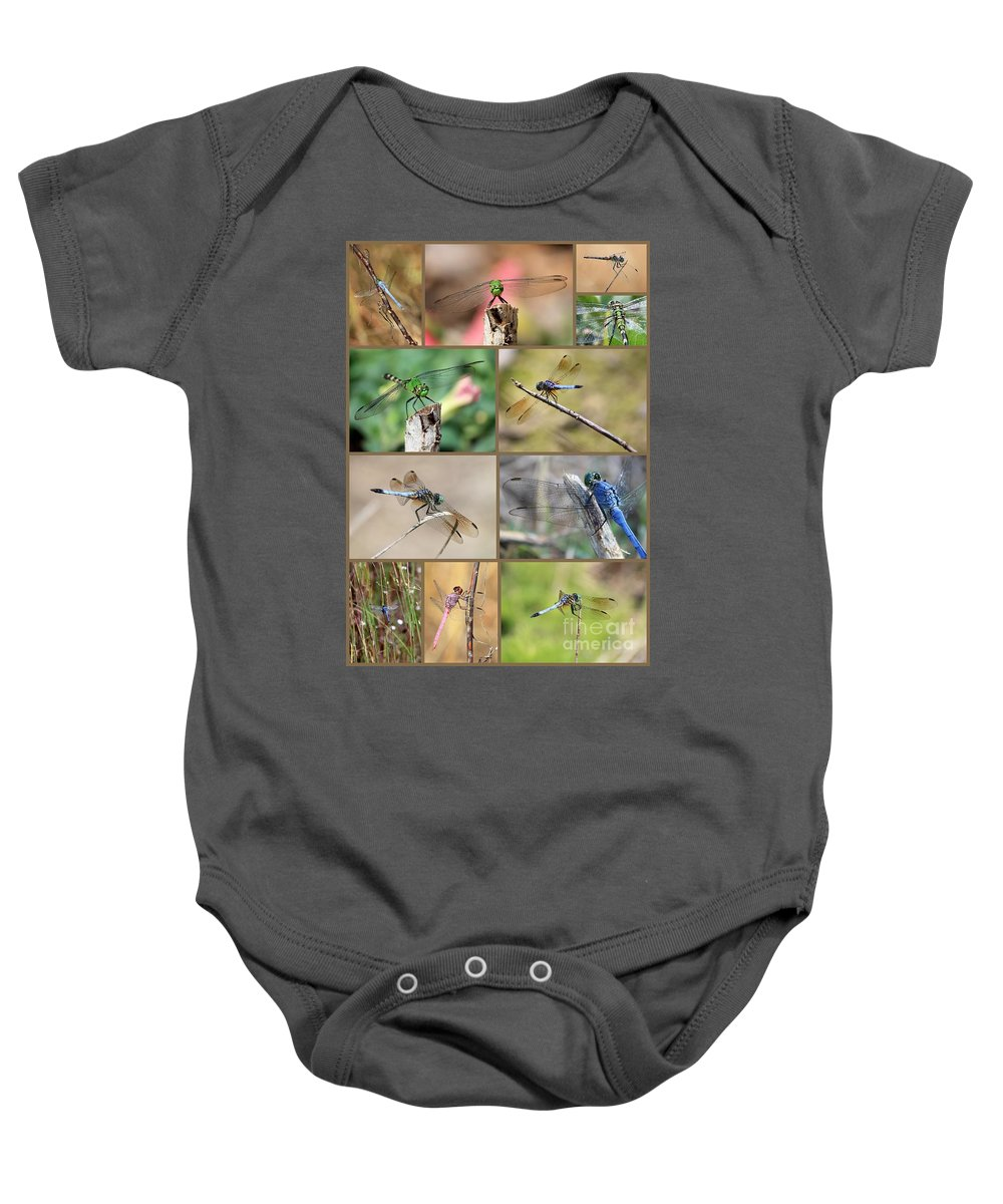 Dragonfly Baby Onesie featuring the photograph Dragonfly Collage 3 by Carol Groenen
