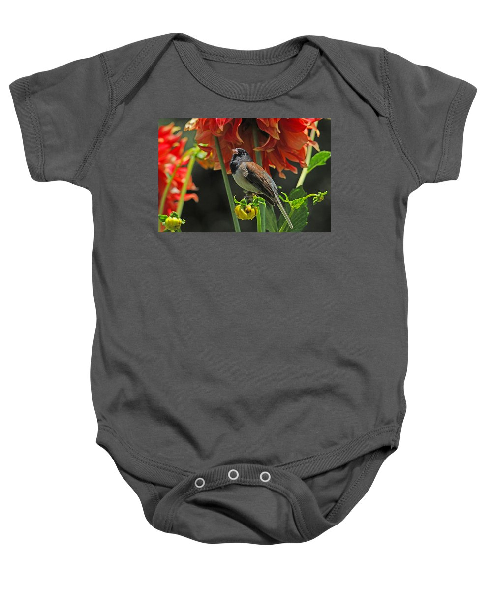 Birds Baby Onesie featuring the photograph Dreams Of Autumn by Lynn Bauer