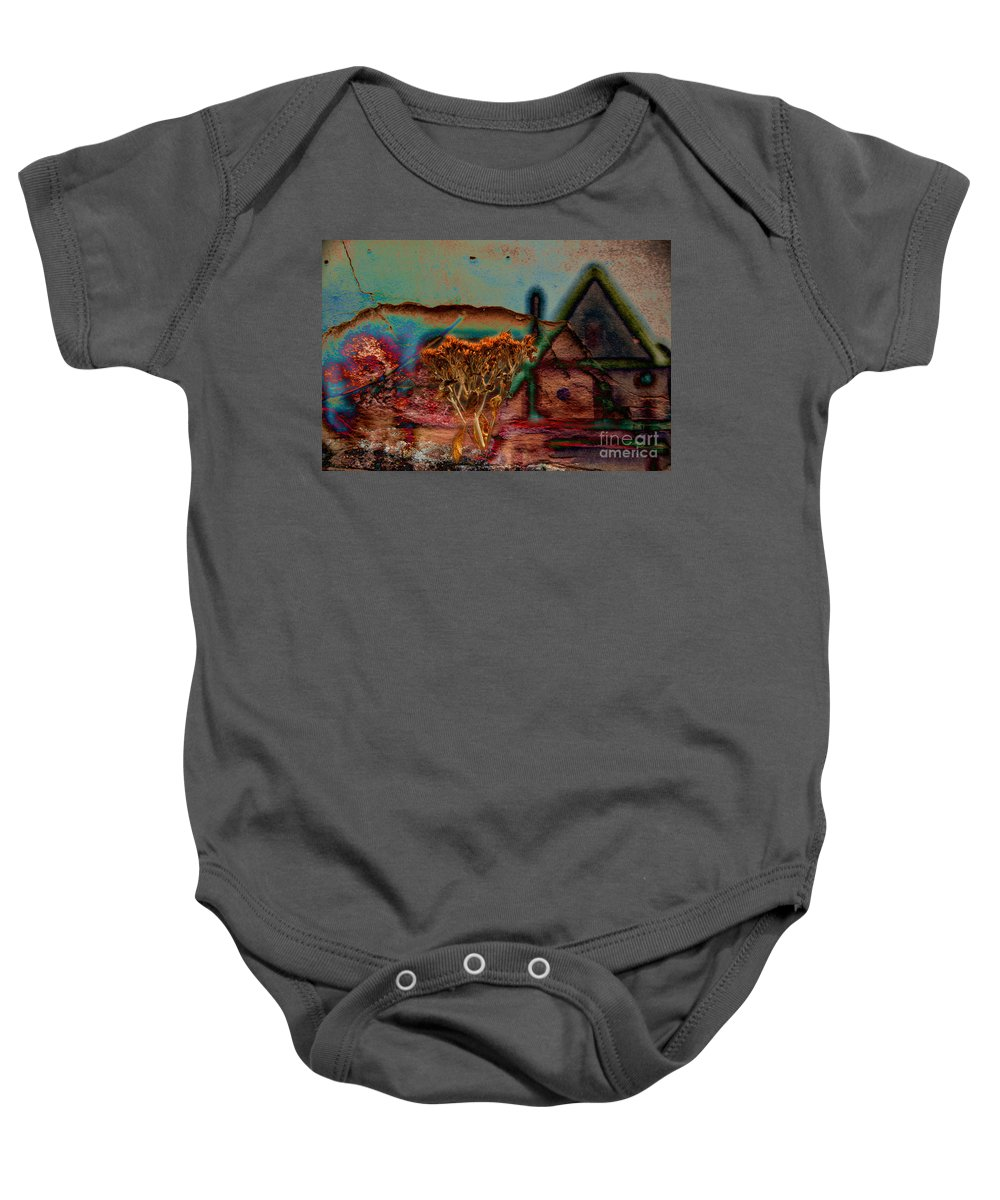 Composite Baby Onesie featuring the photograph Dried And Growing From A Painted Rock by Jay Ressler