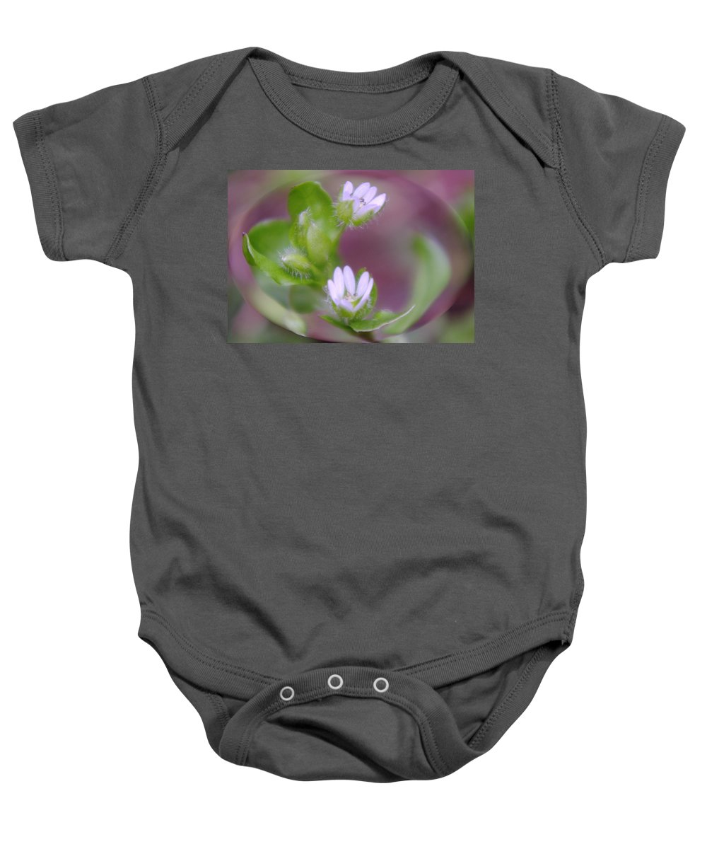 Flowers Baby Onesie featuring the photograph Early Blossoms by Jeff Swan