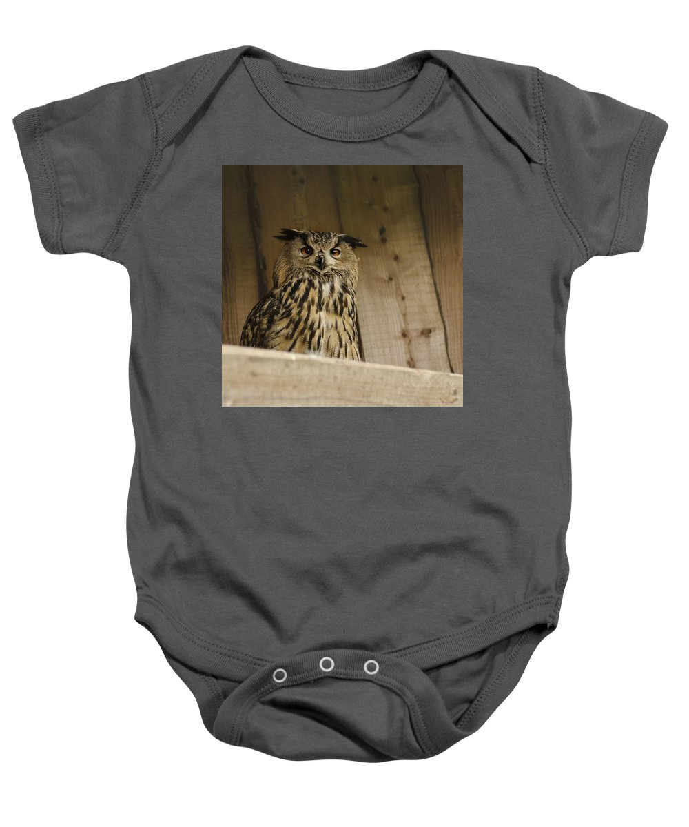 Owl Baby Onesie featuring the photograph European Owl by TouTouke A Y