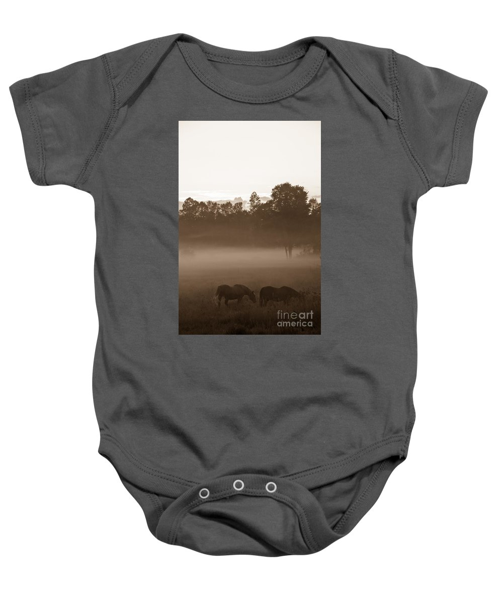 Landscape Baby Onesie featuring the photograph Evening Fog by Cheryl Baxter