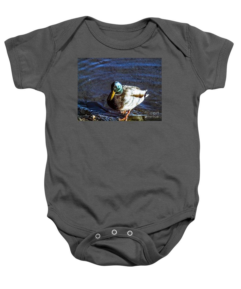 Mallard Baby Onesie featuring the photograph F2110946 by David Fabian