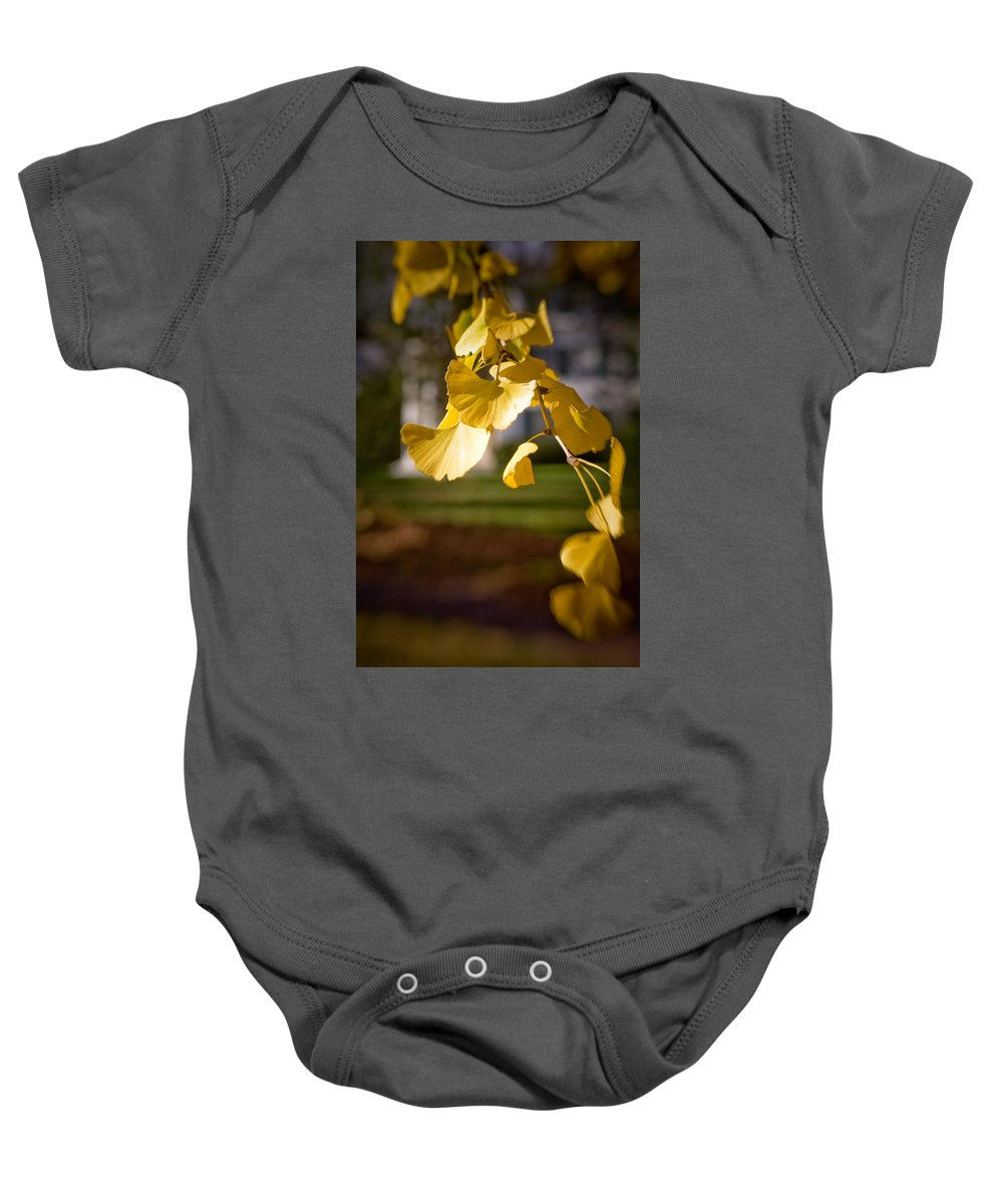 Color Baby Onesie featuring the photograph Fall Colors 6737 by Timothy Bischoff