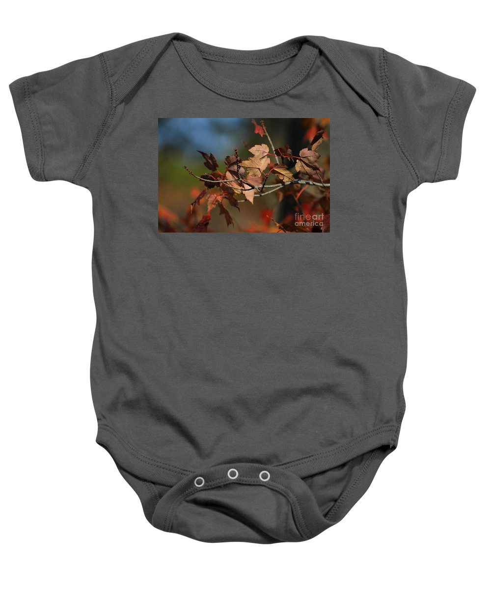 Autumn Baby Onesie featuring the photograph Fall Colors by Karol Livote