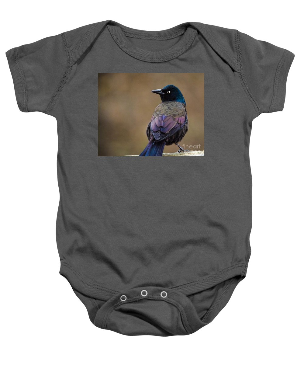 Baby Onesie featuring the photograph Fall Grackle by Cheryl Baxter