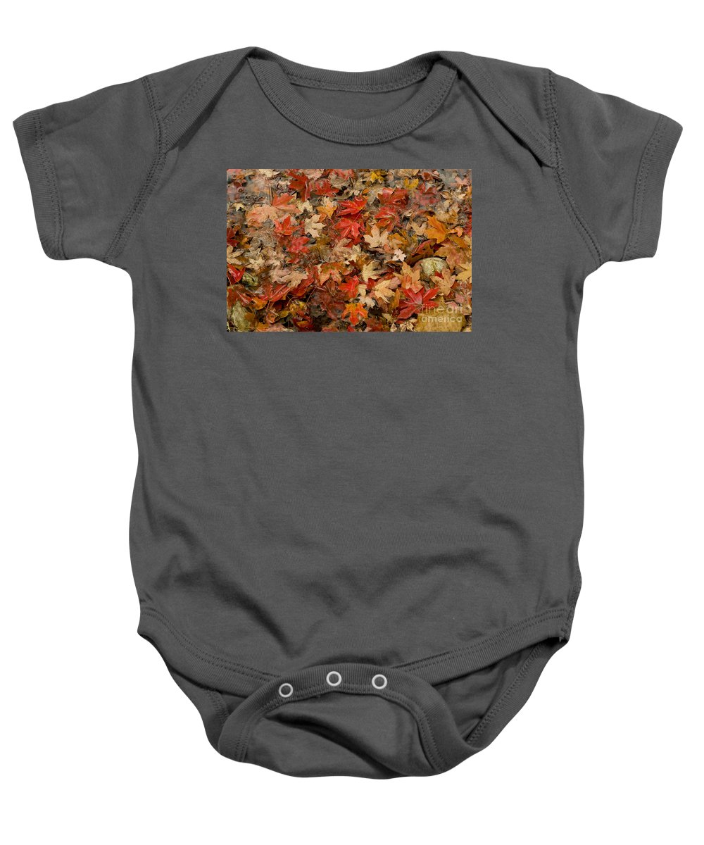 Lost Maples State Natural Area Baby Onesie featuring the photograph Fallen Leaves by Bob Phillips