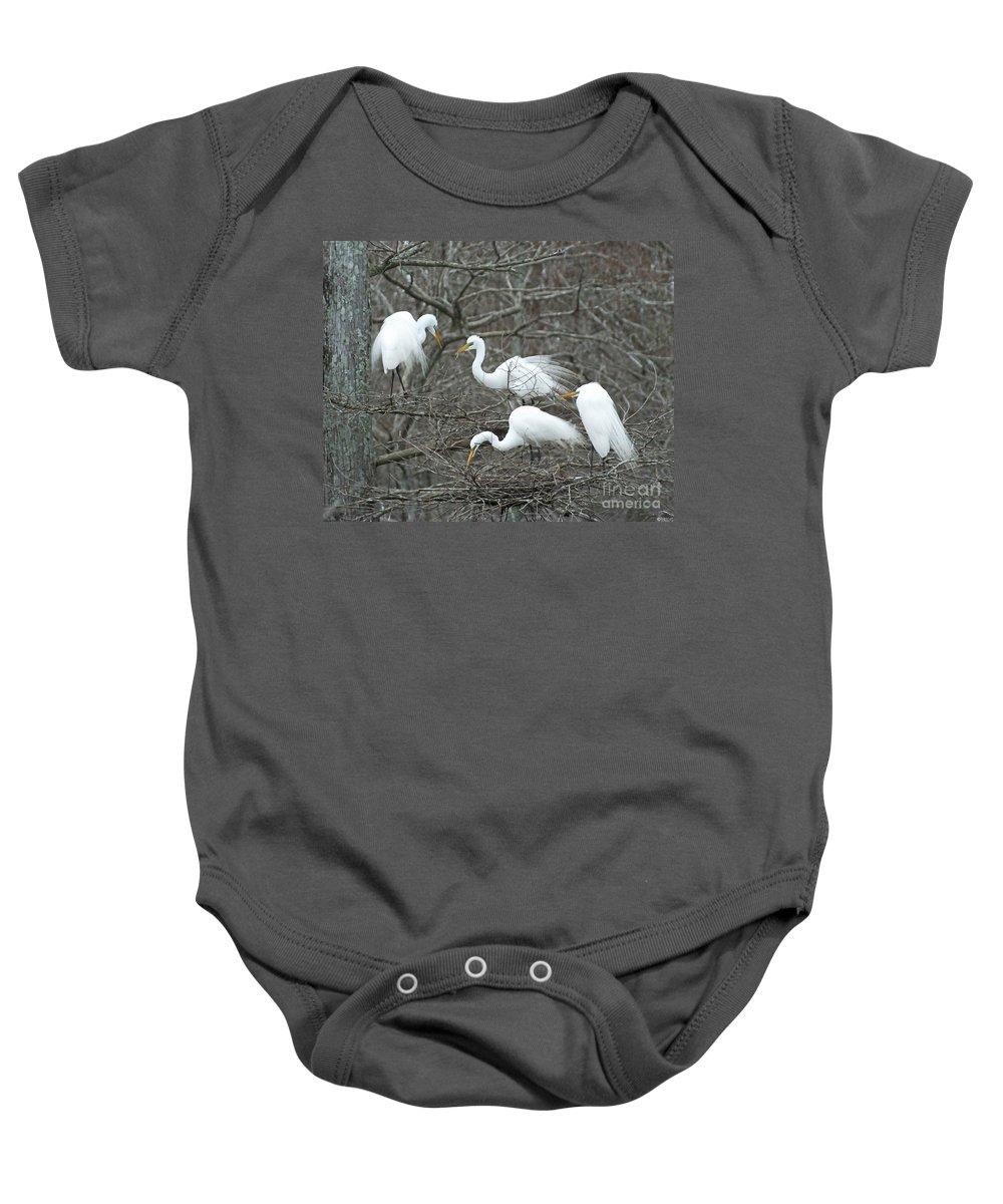 Egrets Baby Onesie featuring the photograph Family Affair Egrets Louisiana by Lizi Beard-Ward