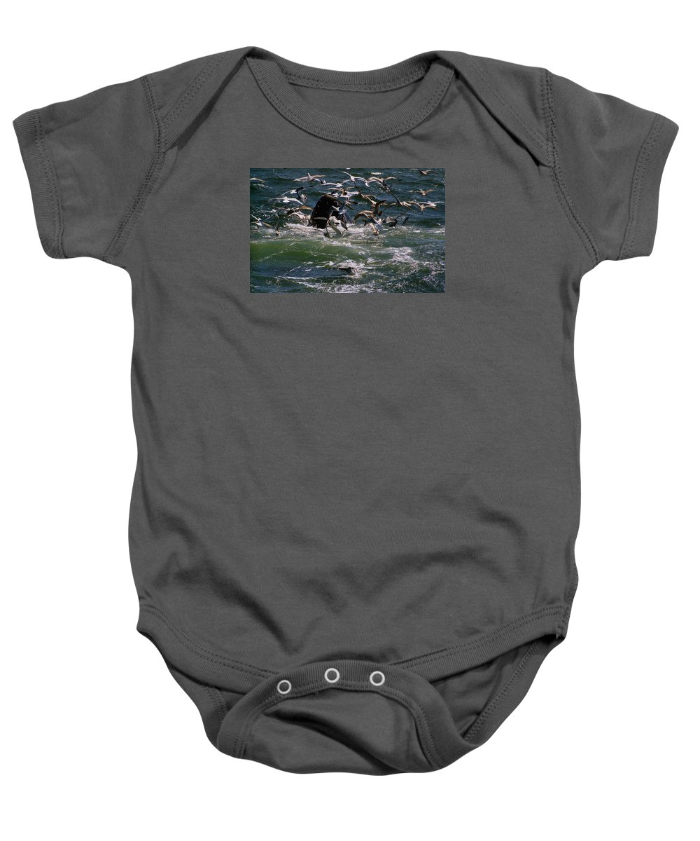 Maritime Baby Onesie featuring the photograph Feeding Humpback Whale by Skip Willits