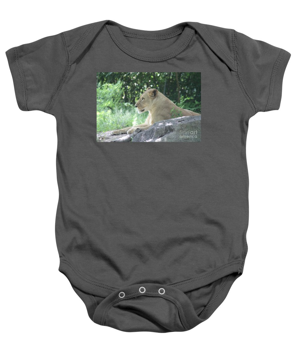 Female Lion On Guard Baby Onesie featuring the photograph Female Lion On Guard by John Telfer