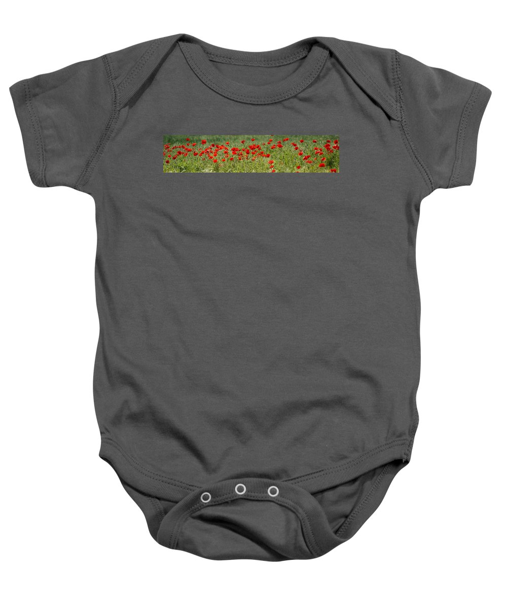Poppies Baby Onesie featuring the photograph Field Of Poppies by Carol Lynch