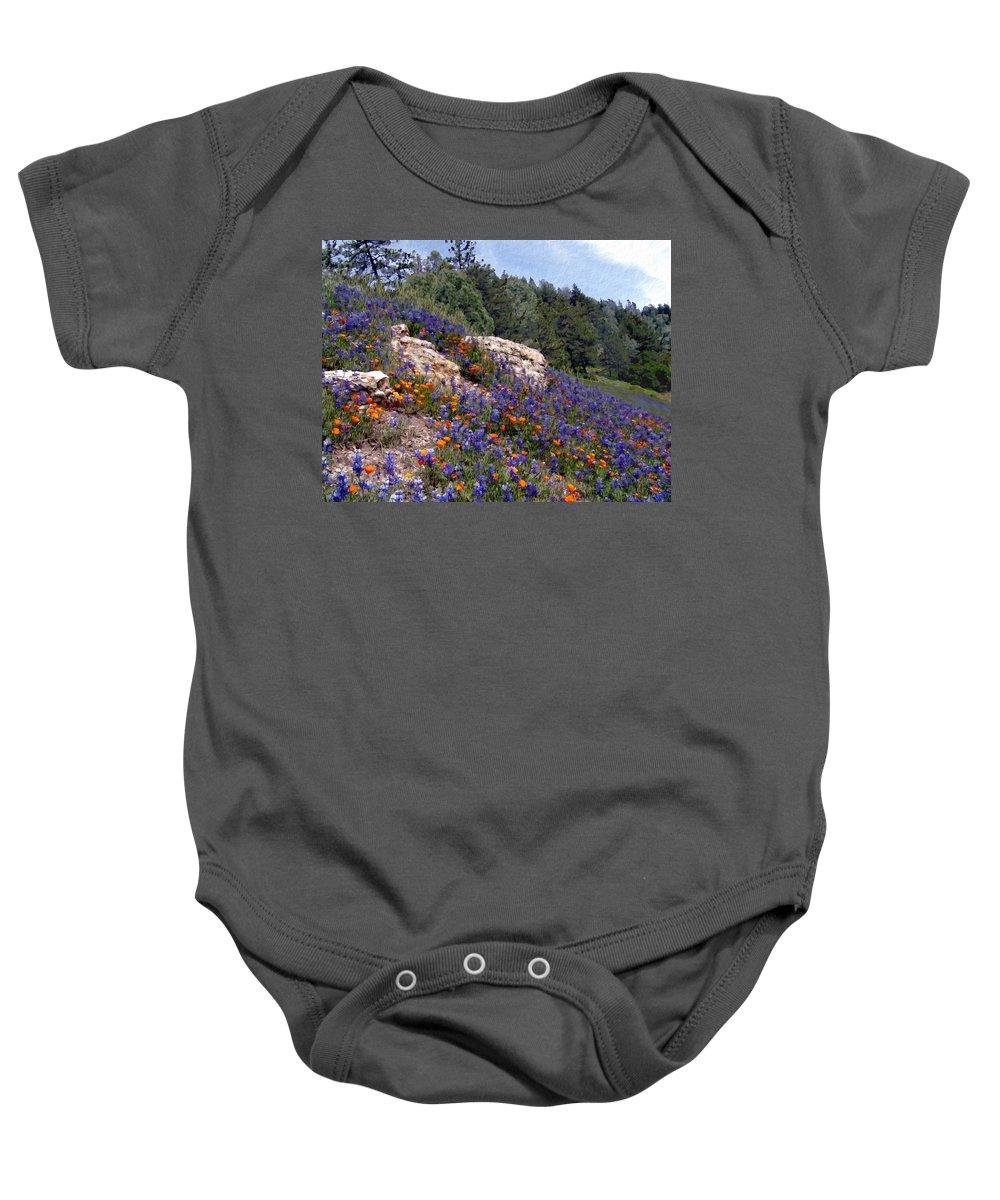 Flowers Baby Onesie featuring the photograph Figueroa Mountain Splendor by Kurt Van Wagner