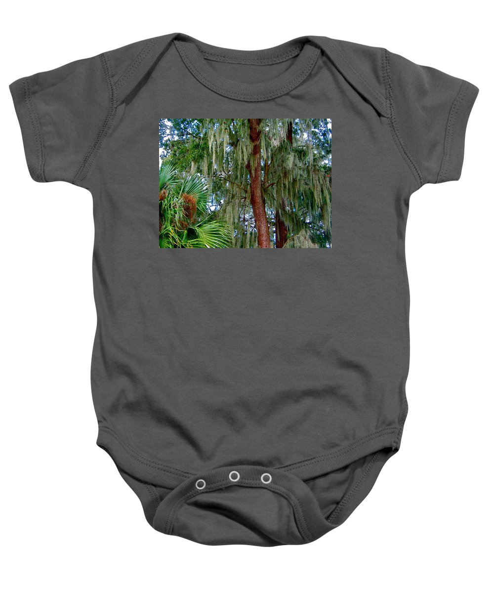 Tree Baby Onesie featuring the photograph Florida Trees by Denise Mazzocco