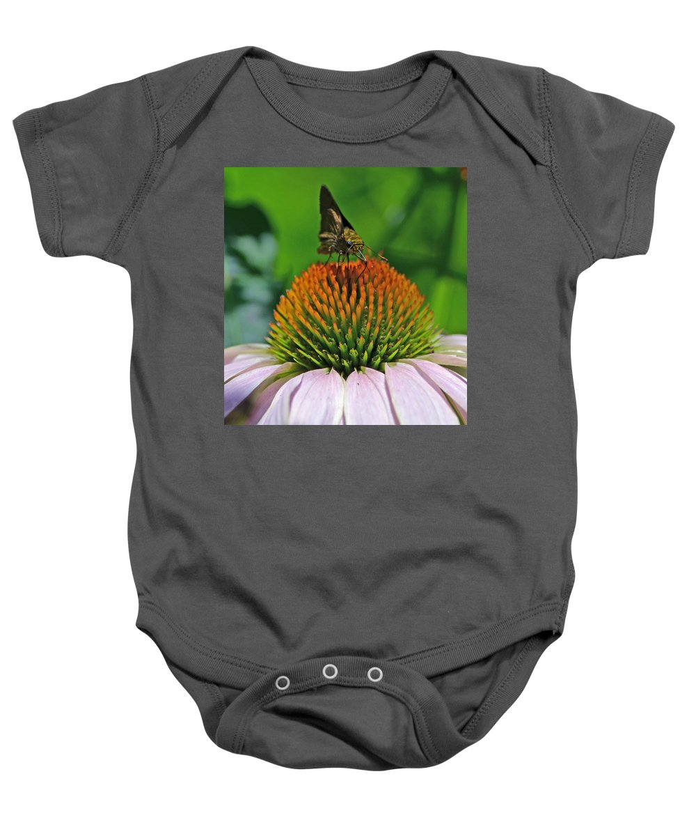 Butterfly Baby Onesie featuring the photograph Flower Feeding by Richard Bryce and Family
