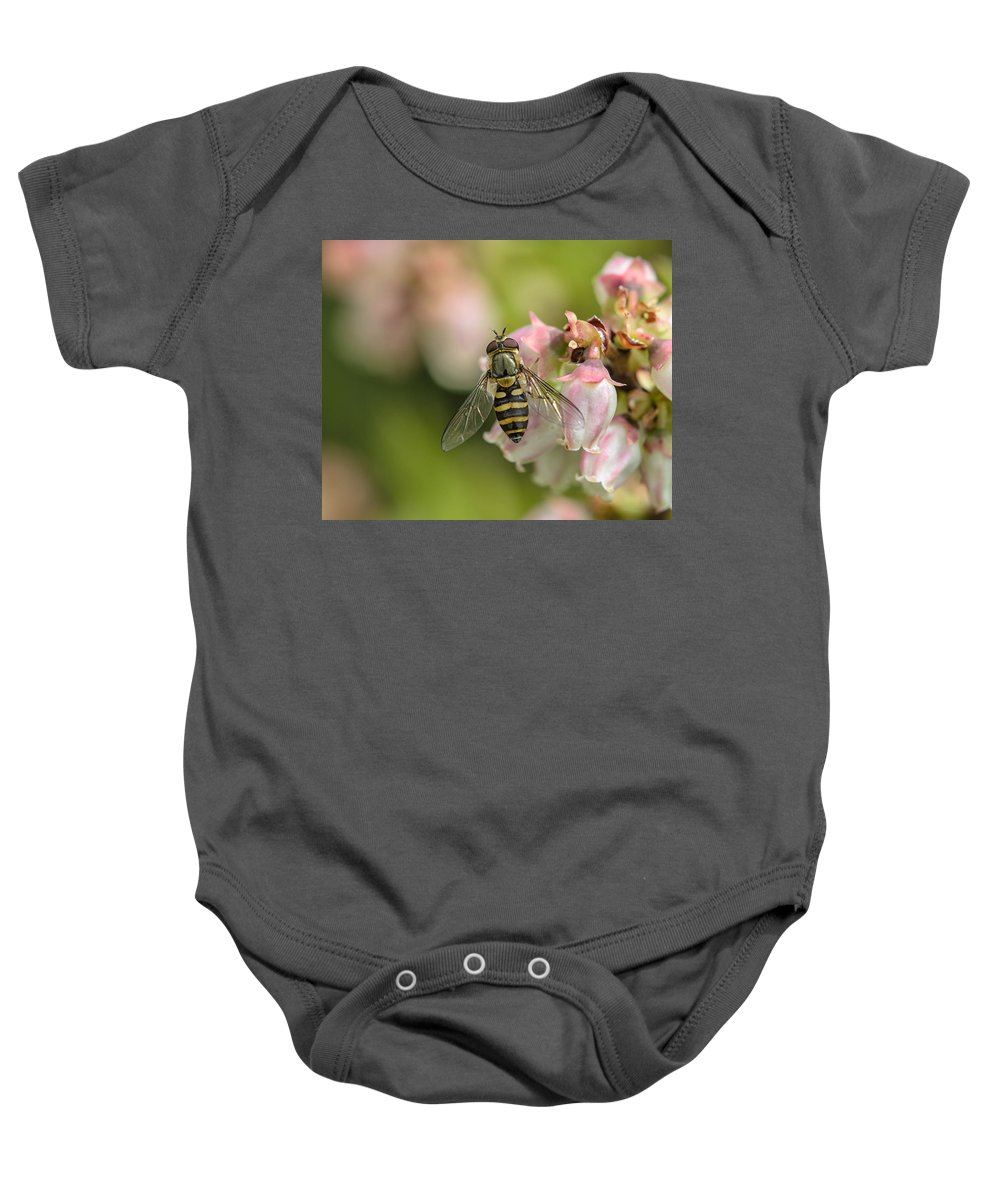 Flowerfly Baby Onesie featuring the photograph Flowerfly Pollinating Blueberry Buds by Susan Capuano