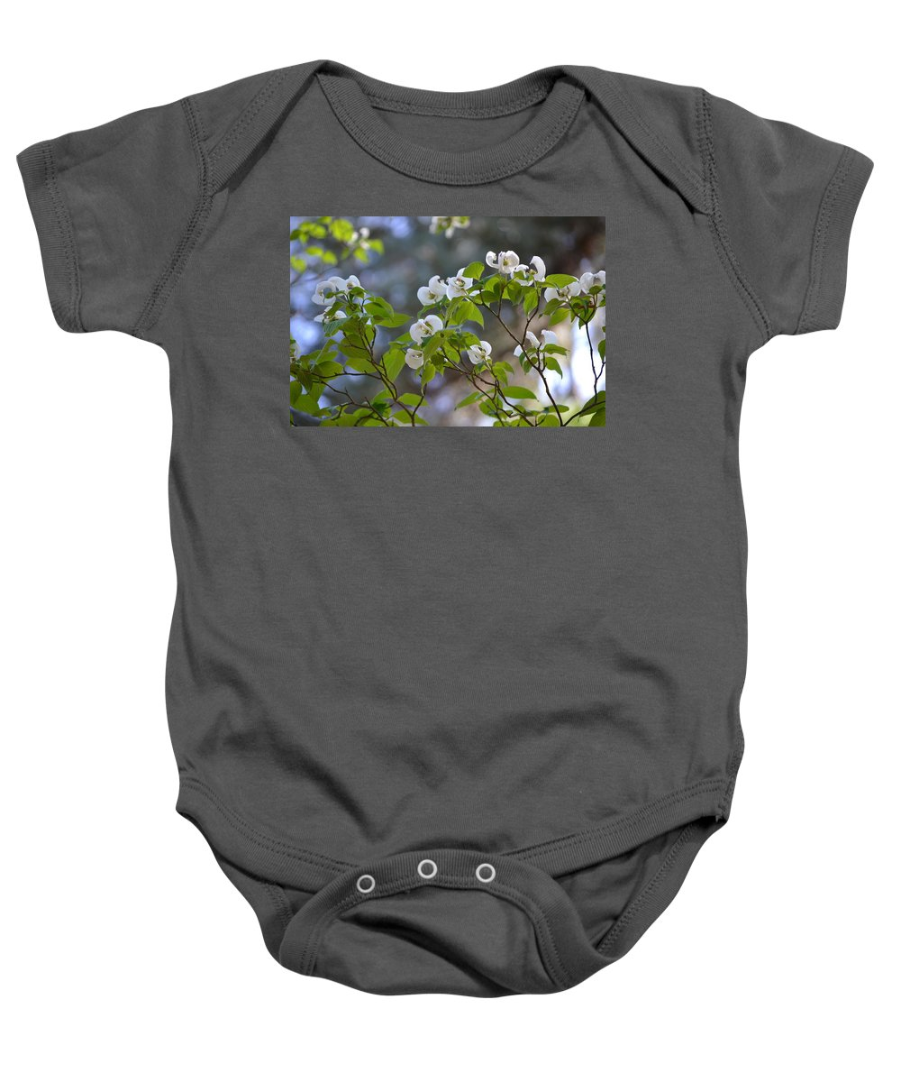 Flowers Baby Onesie featuring the photograph Flowering Branches by Tara Potts