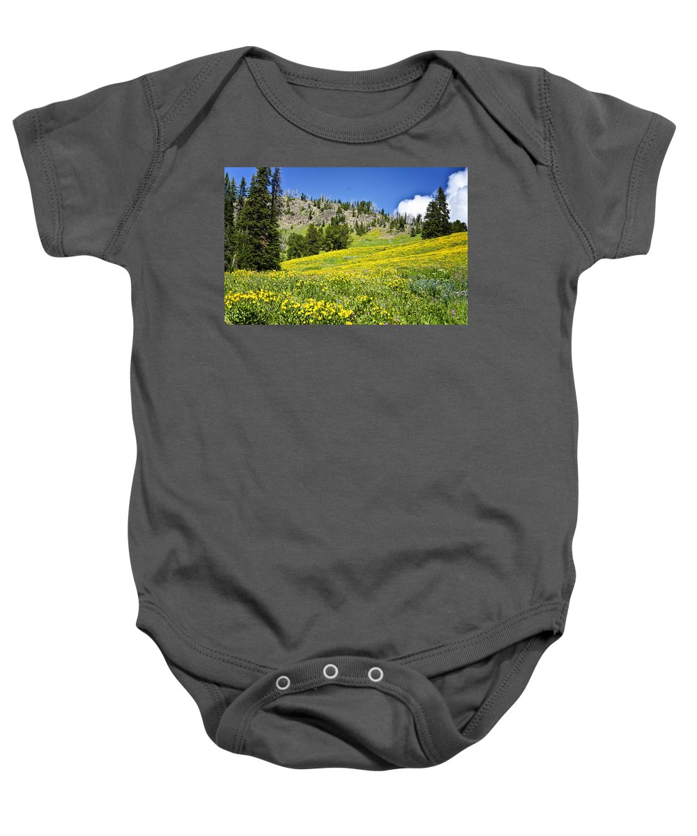 Yellowstone National Park Baby Onesie featuring the photograph Flowers In The Park by Jon Berghoff