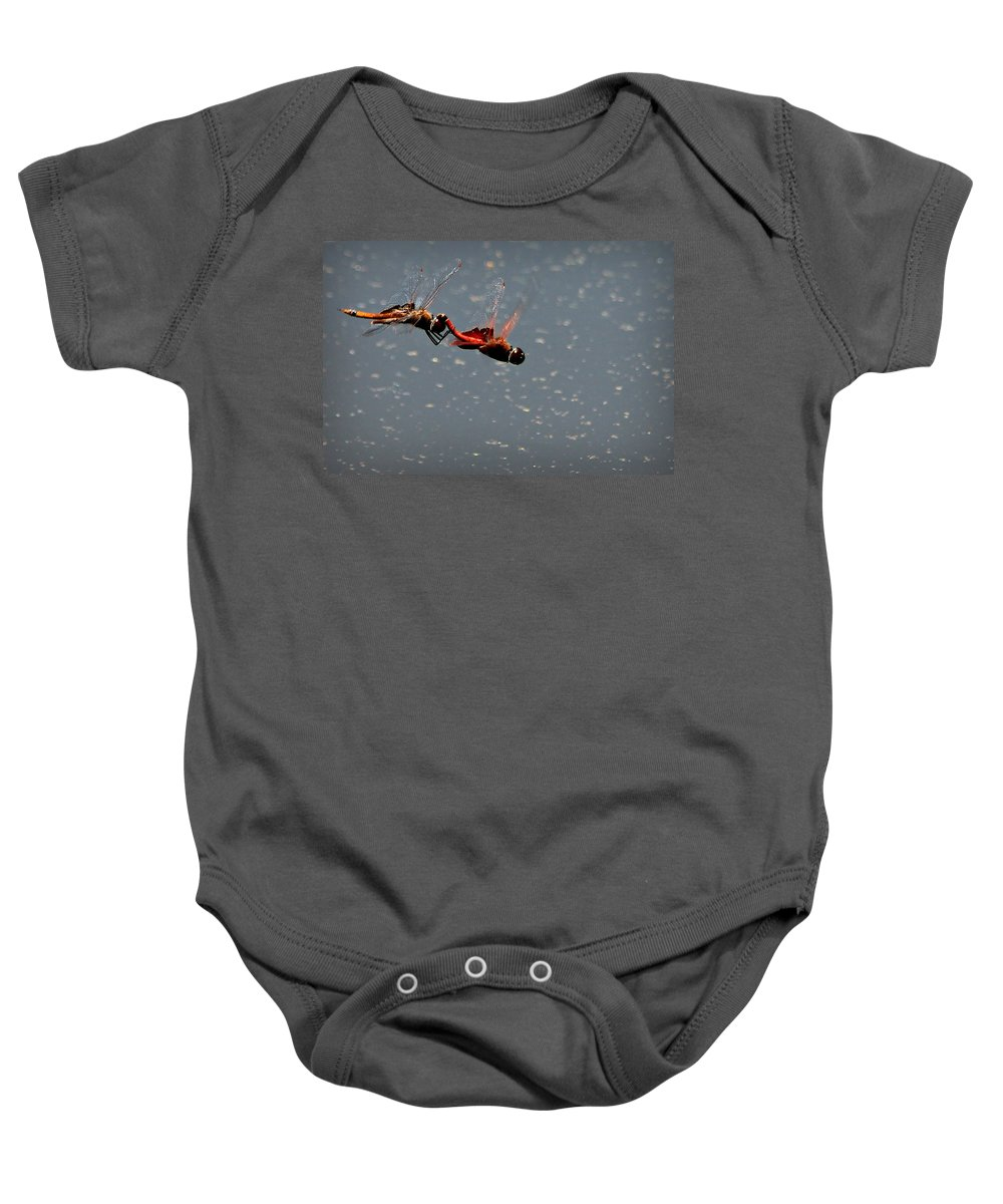 Dragon Baby Onesie featuring the photograph Fly United by Reid Callaway