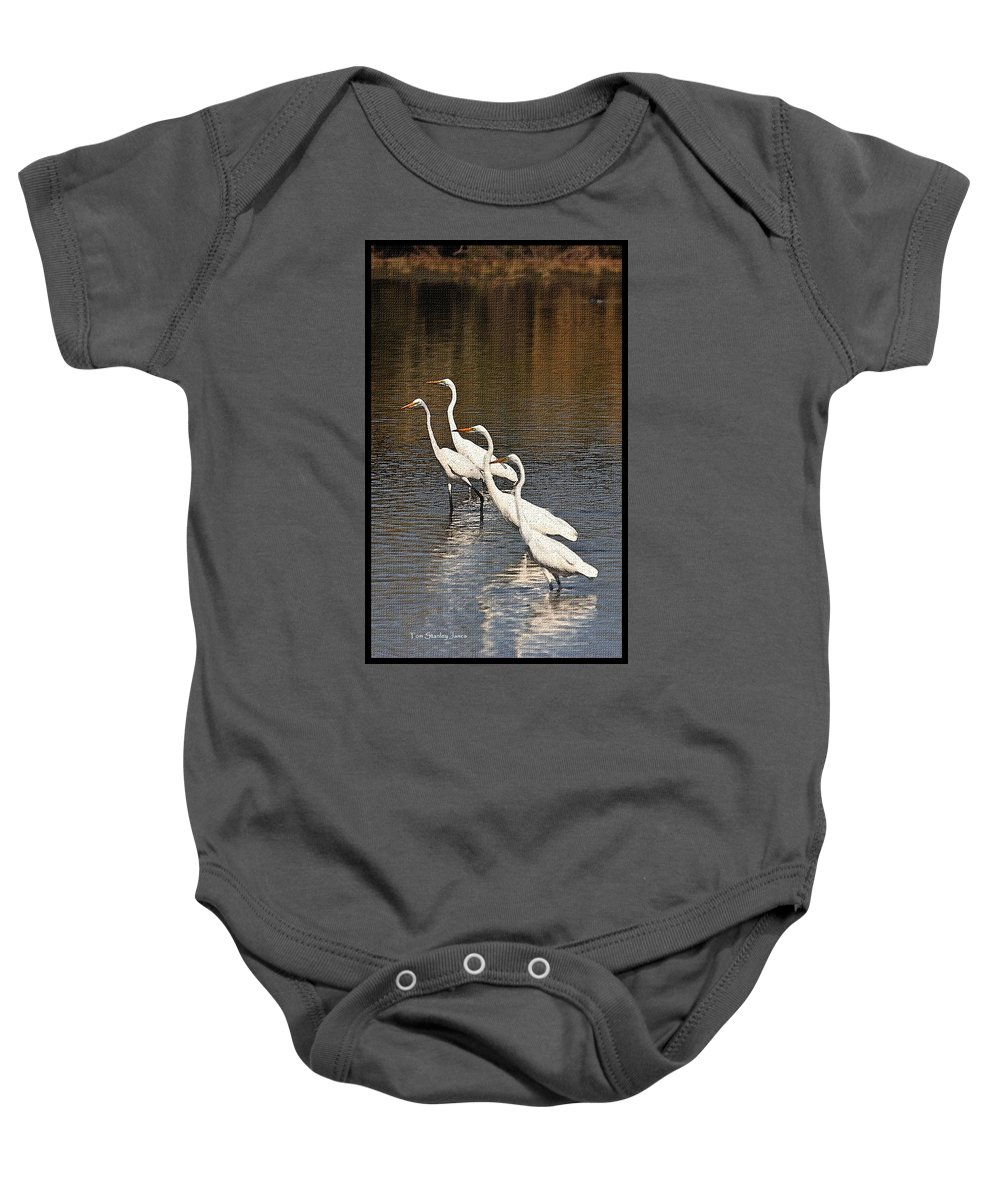 Four Egrets Fishing Baby Onesie featuring the photograph Four Egrets Fishing by Tom Janca