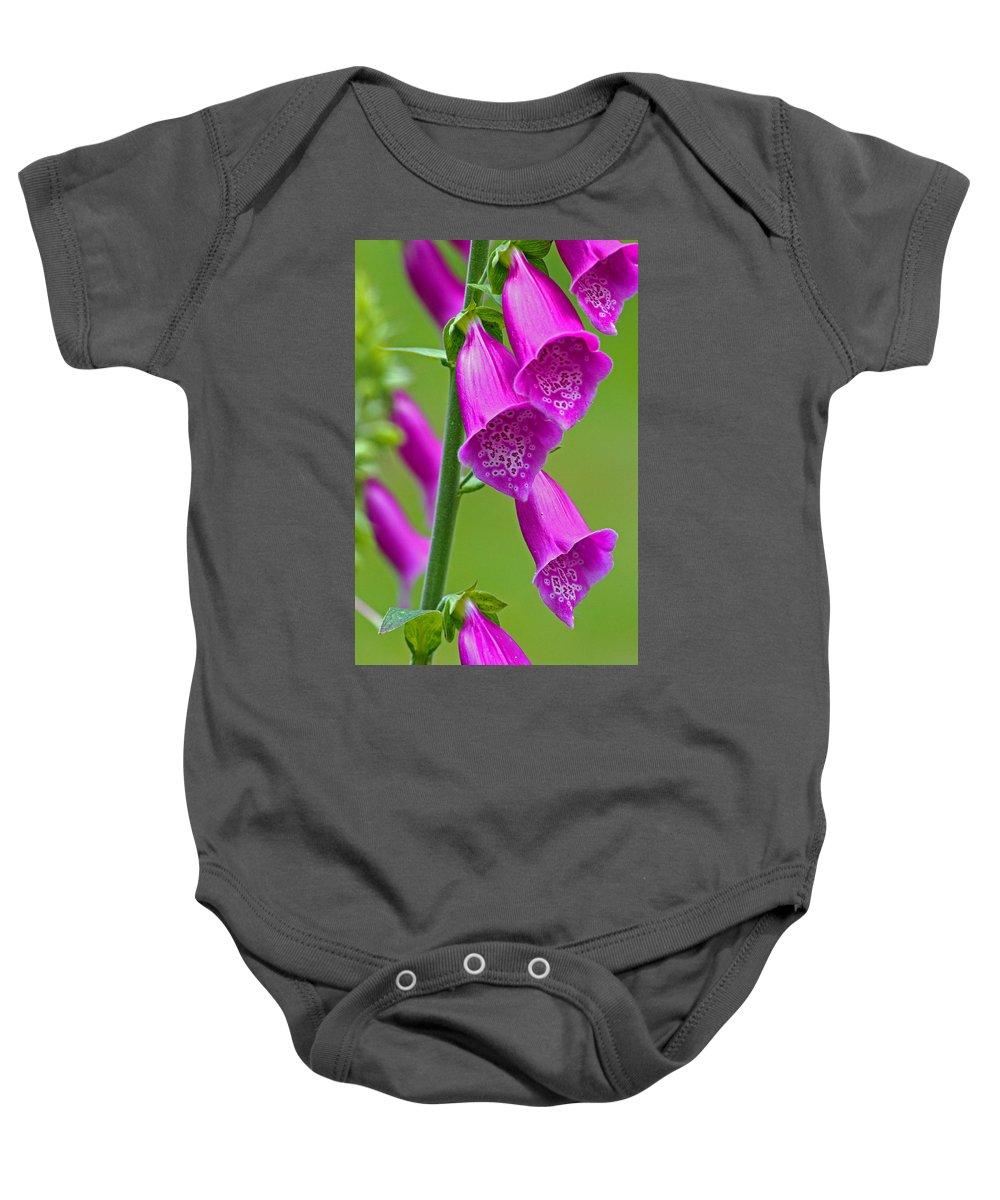 Foxglove Baby Onesie featuring the photograph Foxglove Digitalis Purpurea by Tony Murtagh