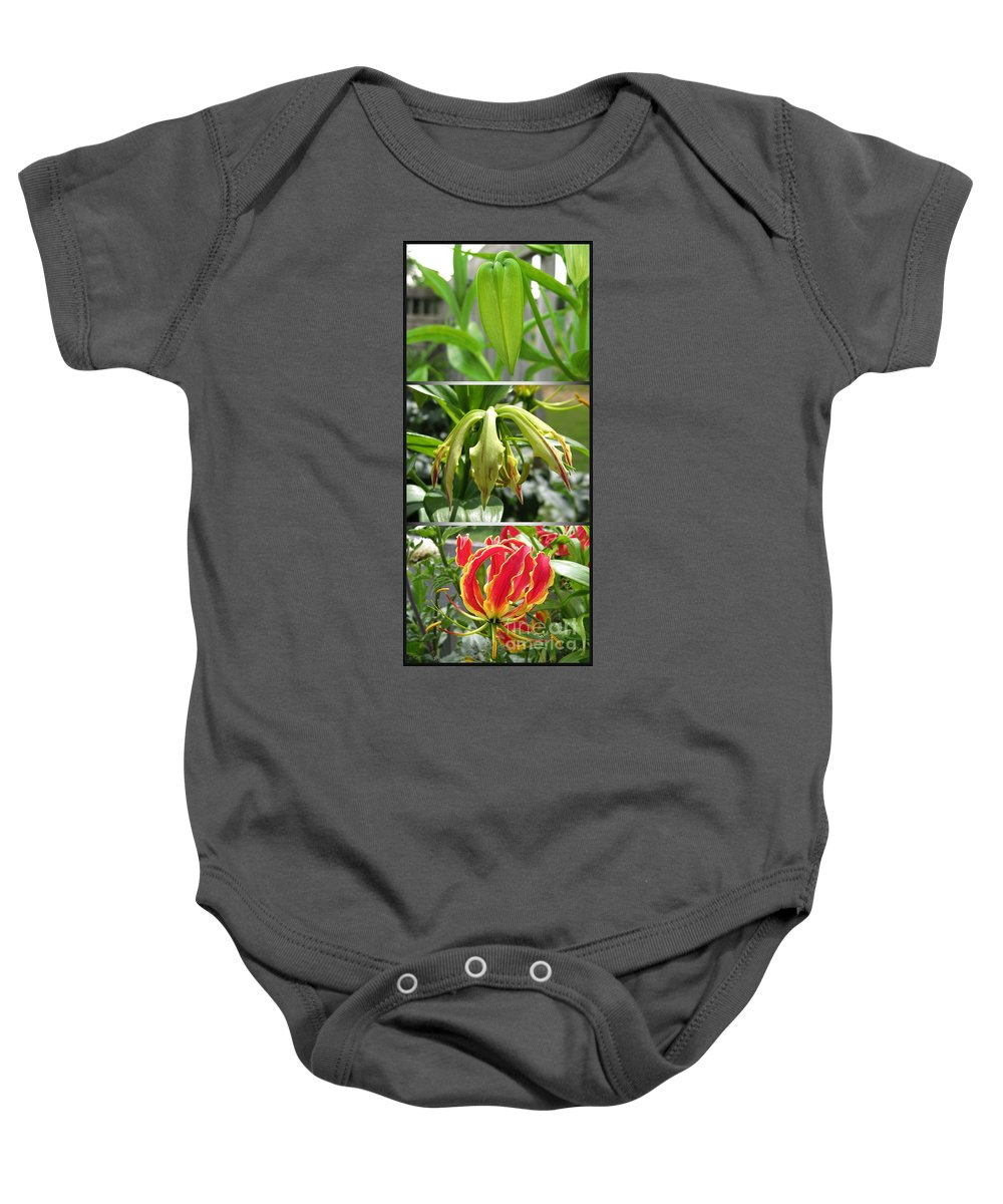 Gloriosa Baby Onesie featuring the photograph From Bud To Bloom - Gloriosa Named Rothschildiana by J McCombie