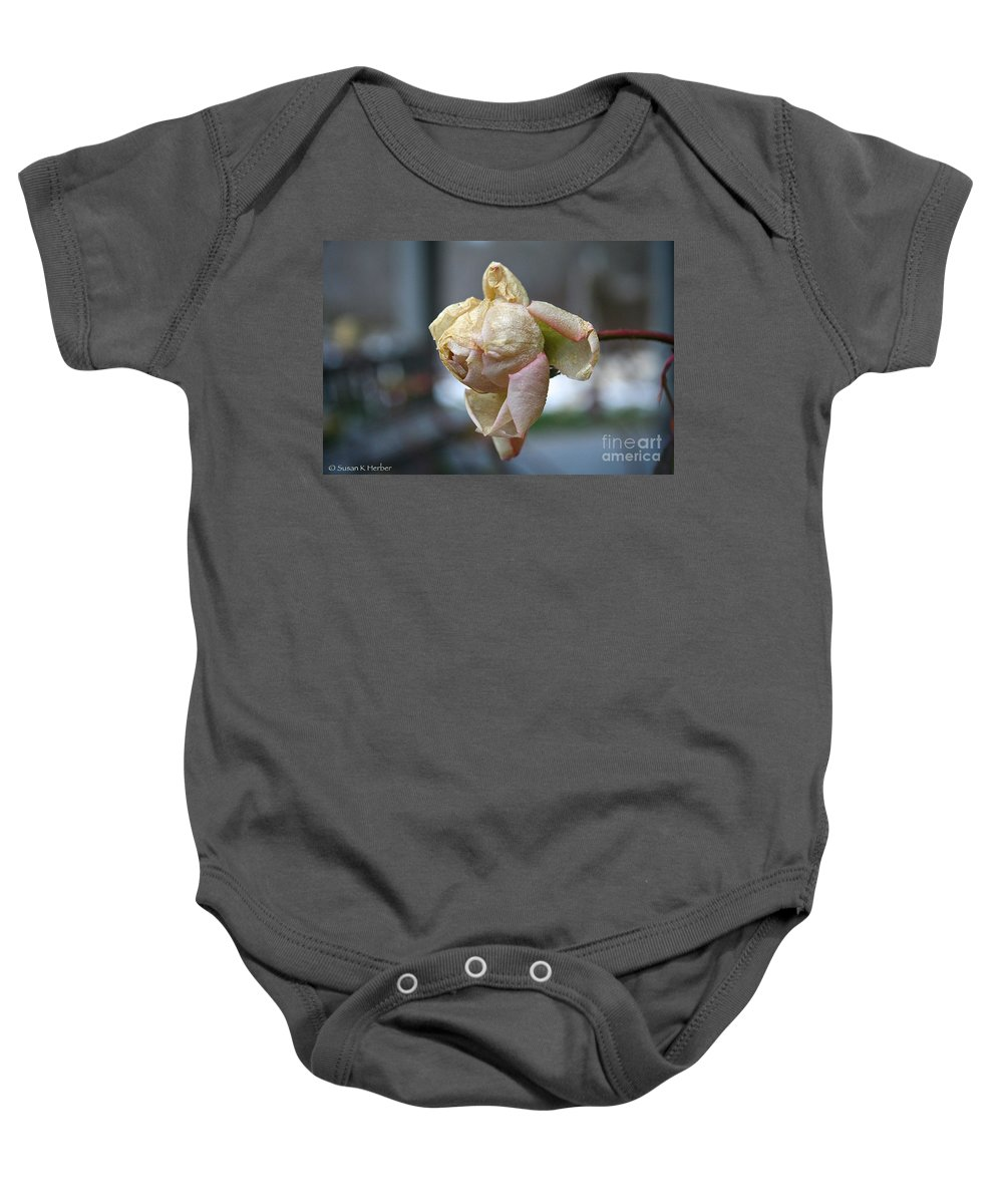 Flower Baby Onesie featuring the photograph Frozen Rose by Susan Herber