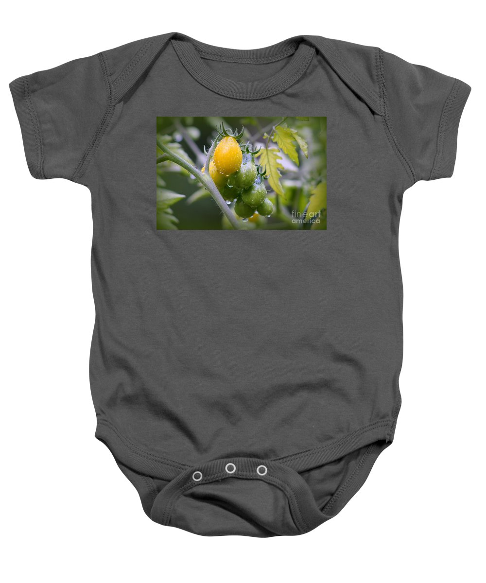 Tomatoes Baby Onesie featuring the photograph Fruits Of Our Labours by Leone Lund