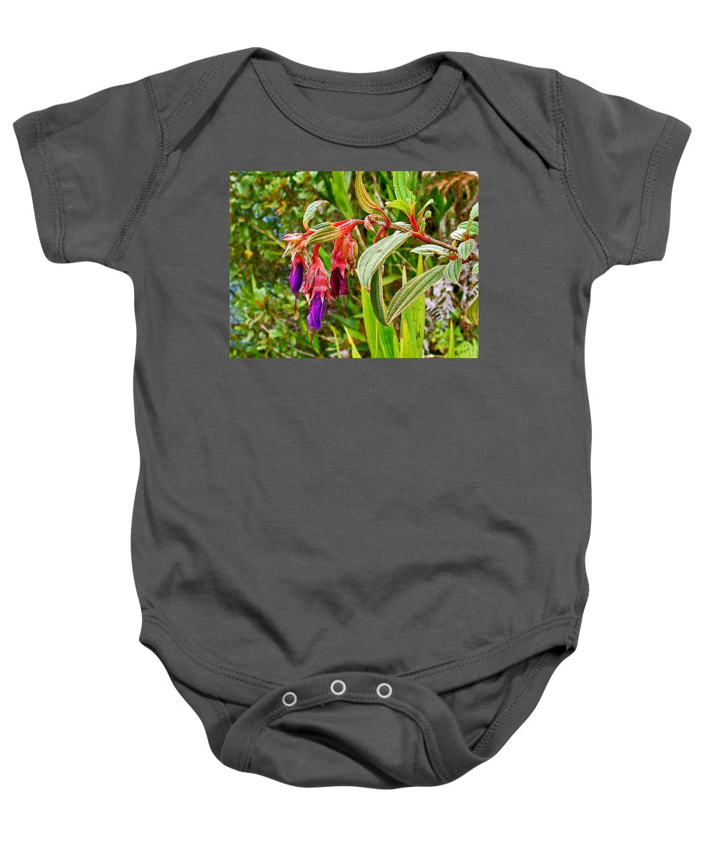 Fuchsia Along The Trail To Huayna Picchu Baby Onesie featuring the photograph Fuchsia Along The Trail To Huayna Picchu-peru by Ruth Hager
