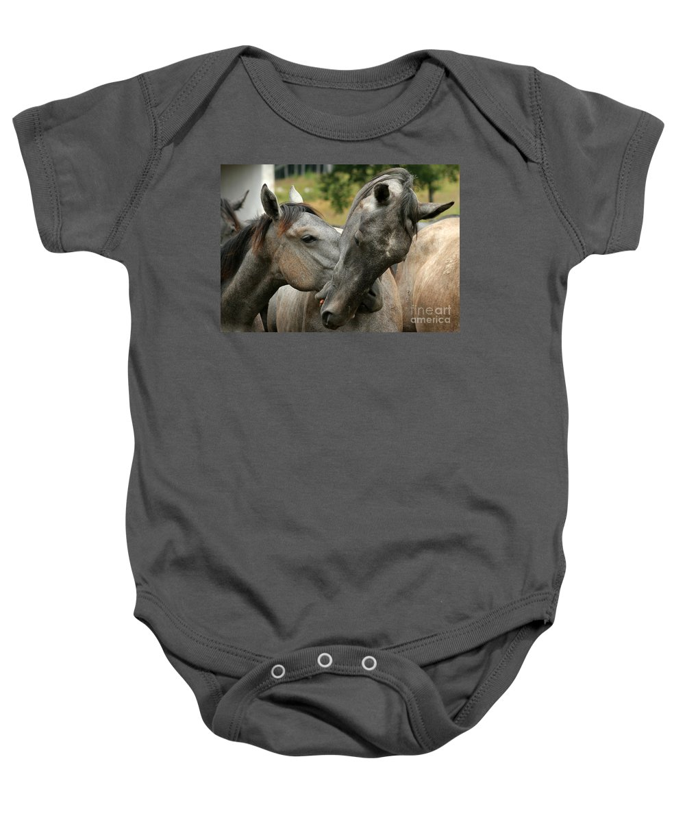 Horse Baby Onesie featuring the photograph Funny Horses by Angel Ciesniarska