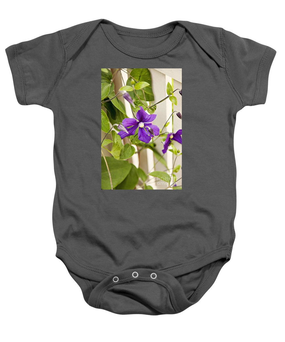 Fence Baby Onesie featuring the photograph Garden Clematis by Sophie McAulay