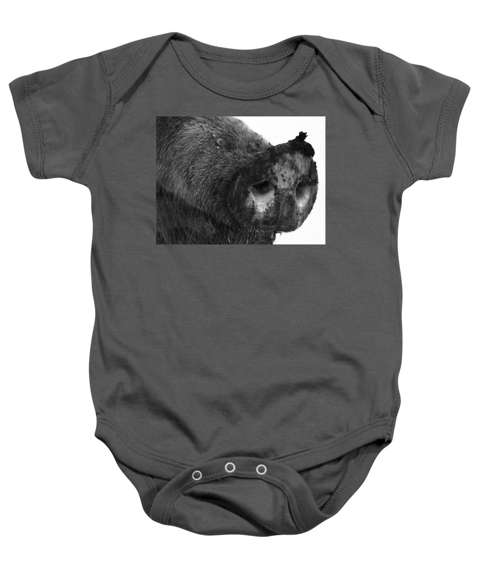 Animal Baby Onesie featuring the photograph Gluttony by The Artist Project
