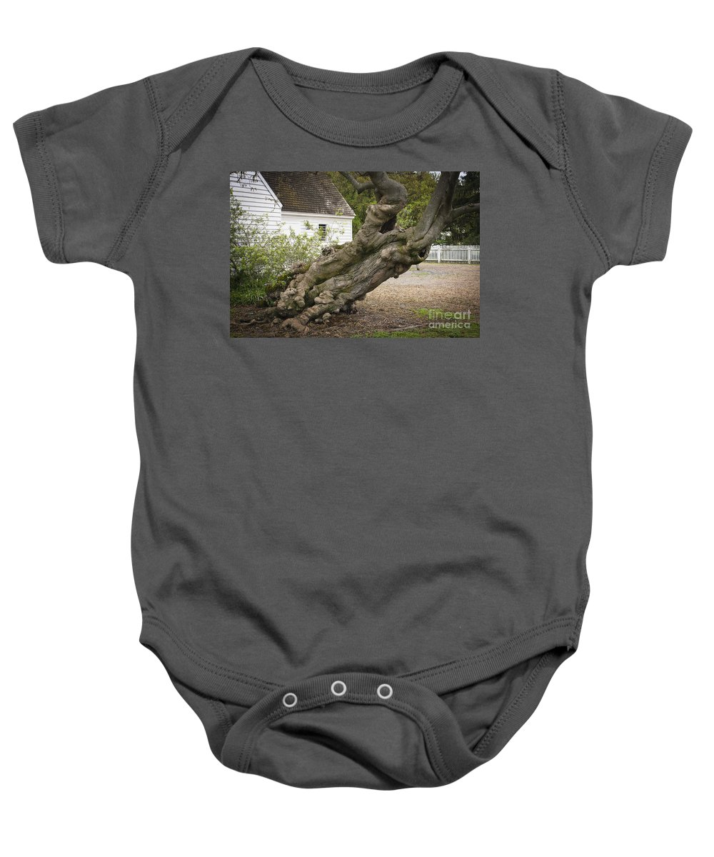 Williamsburg Baby Onesie featuring the photograph Gnarly by Teresa Mucha