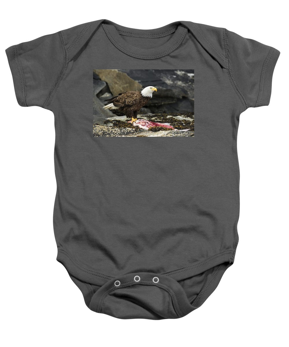 Eagle Baby Onesie featuring the photograph Go Fish by Ted Raynor