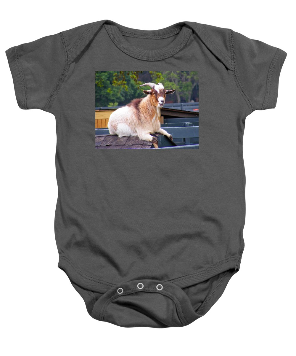 Duane Mccullough Baby Onesie featuring the photograph Goat On The Roof by Duane McCullough