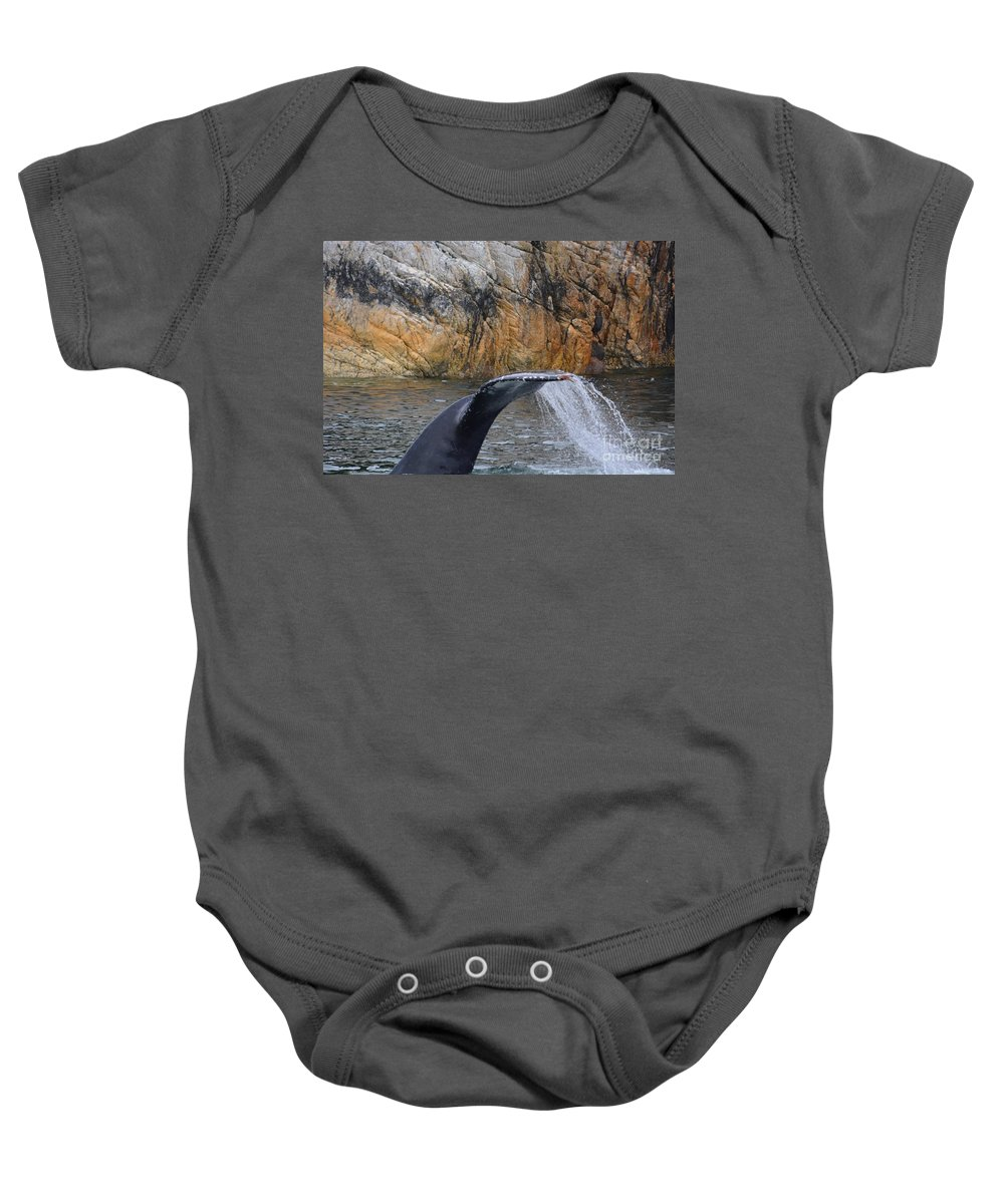 Whale Baby Onesie featuring the photograph Going Down by Deanna Cagle
