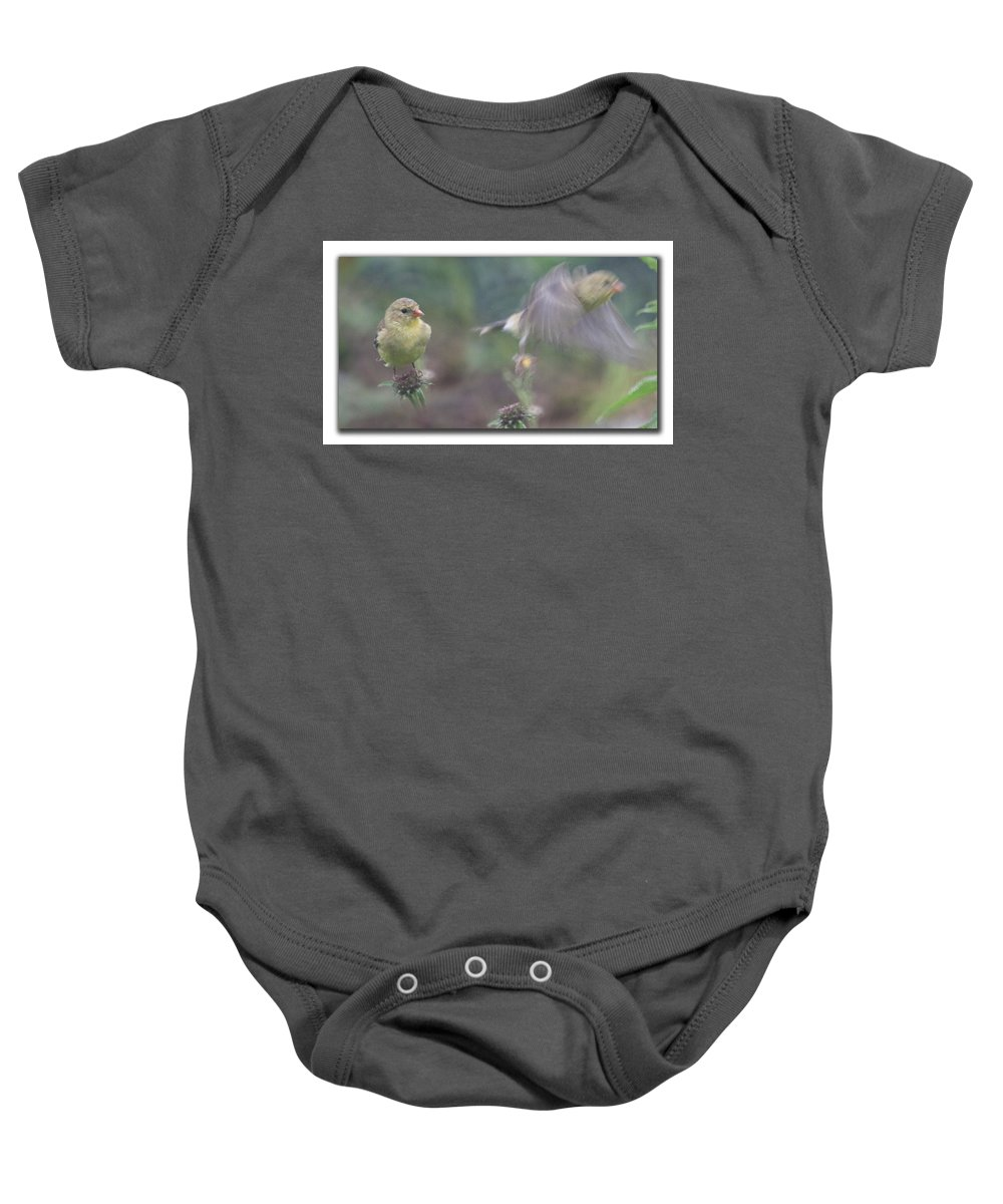 New England Baby Onesie featuring the photograph Goldfinch On Echinacia by Jeff Folger