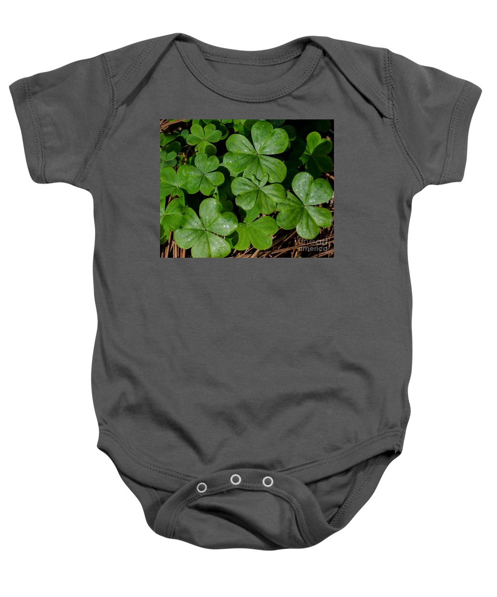 Leaf Baby Onesie featuring the photograph Good Luck 2 by Andrea Anderegg