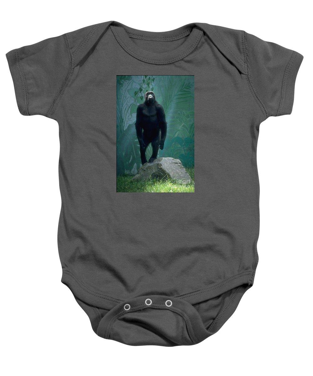 Gorilla Baby Onesie featuring the photograph Gorilla Rock by Gary Gingrich Galleries