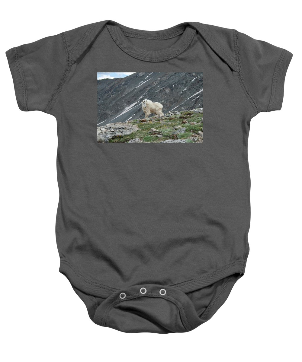 Mountain Goat Baby Onesie featuring the photograph Gq Mtn. Goat by Angus Hooper Iii