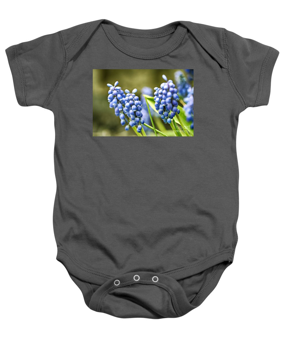 Hyacinth Baby Onesie featuring the photograph Grape Hyacinths by Sophie McAulay