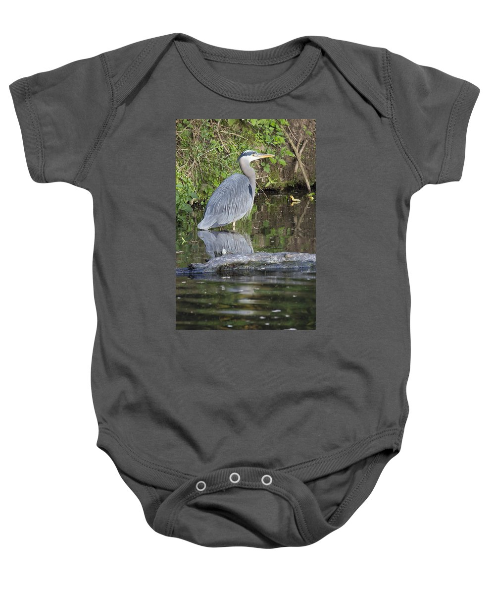 Great Baby Onesie featuring the photograph Great Blue Heron Standing In Water by Jit Lim