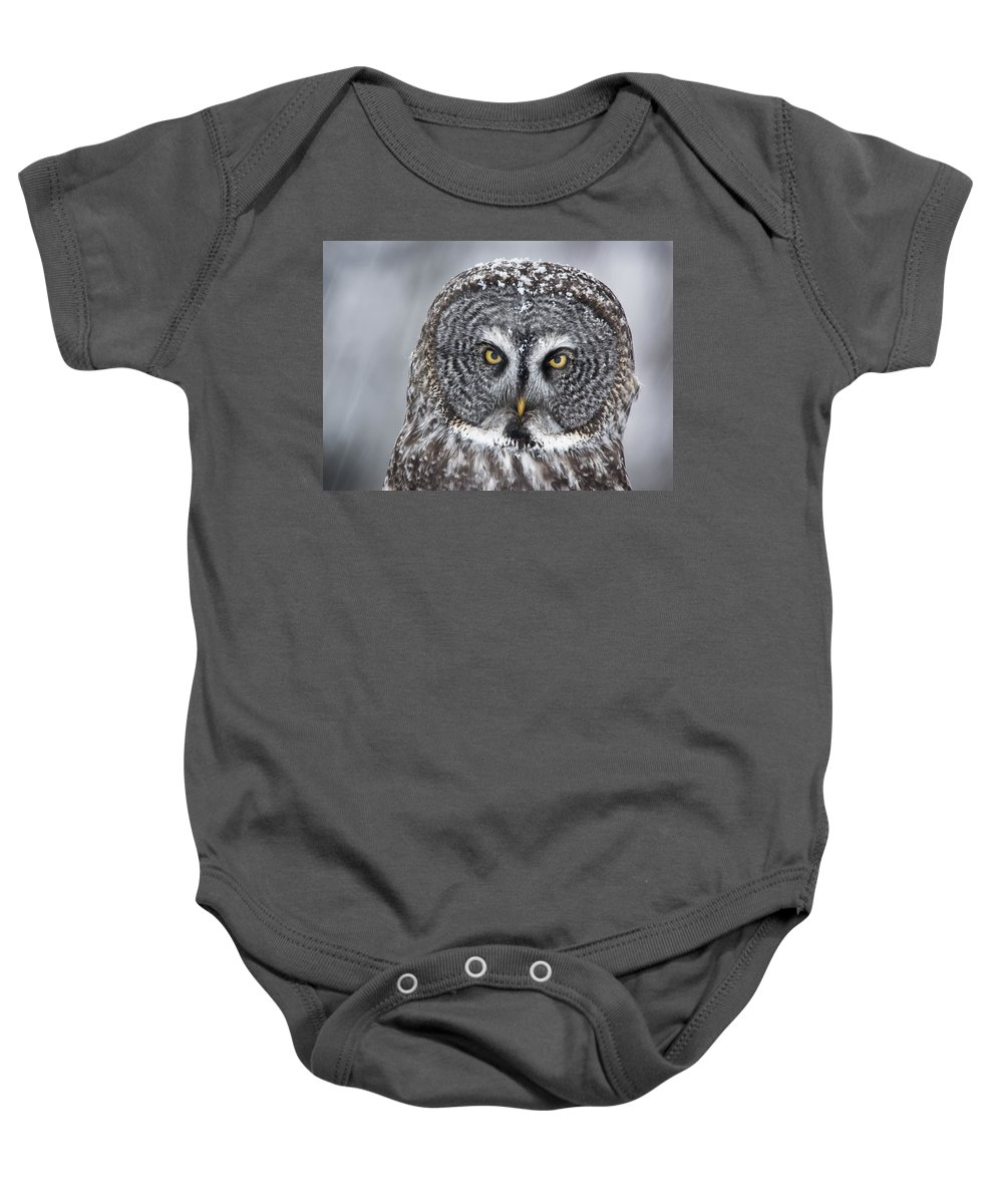 Nis Baby Onesie featuring the photograph Great Gray Owl Scowl Minnesota by Benjamin Olson