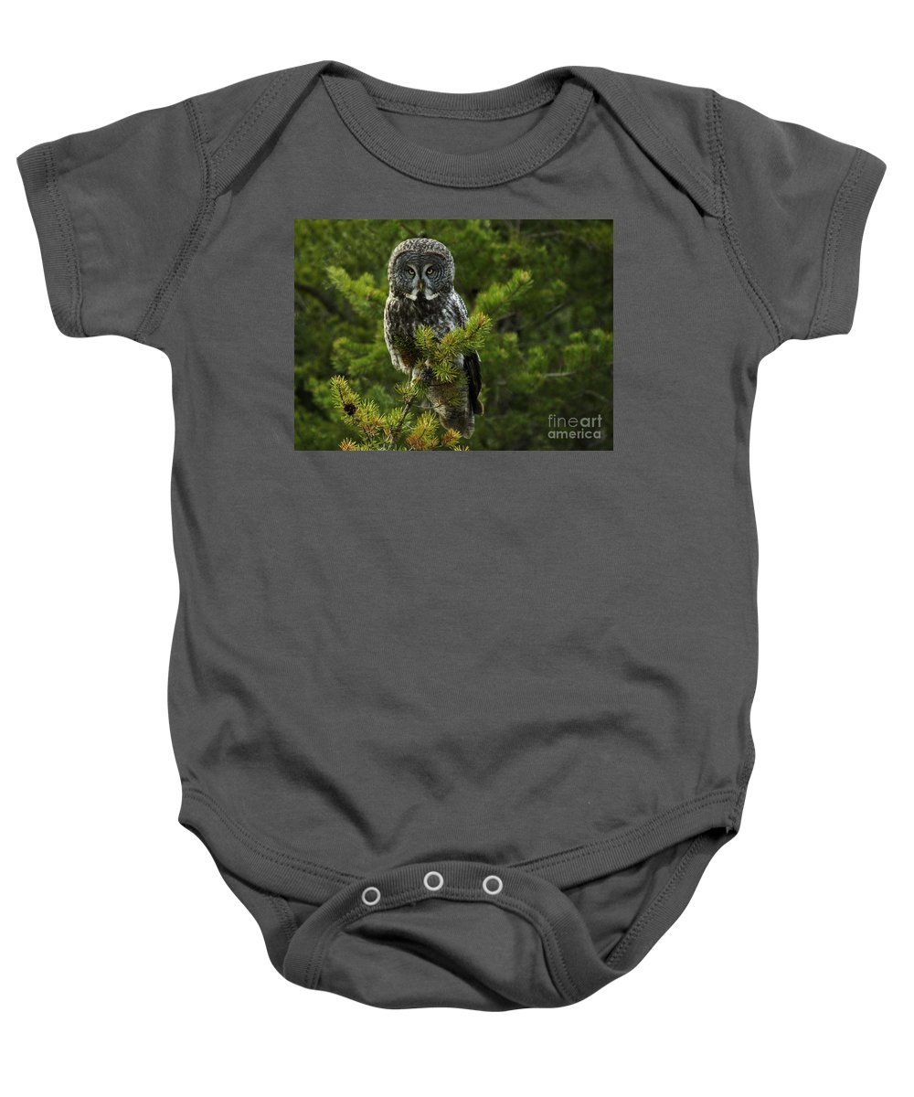 Owl Baby Onesie featuring the photograph Great Grey Owl by Bob Christopher