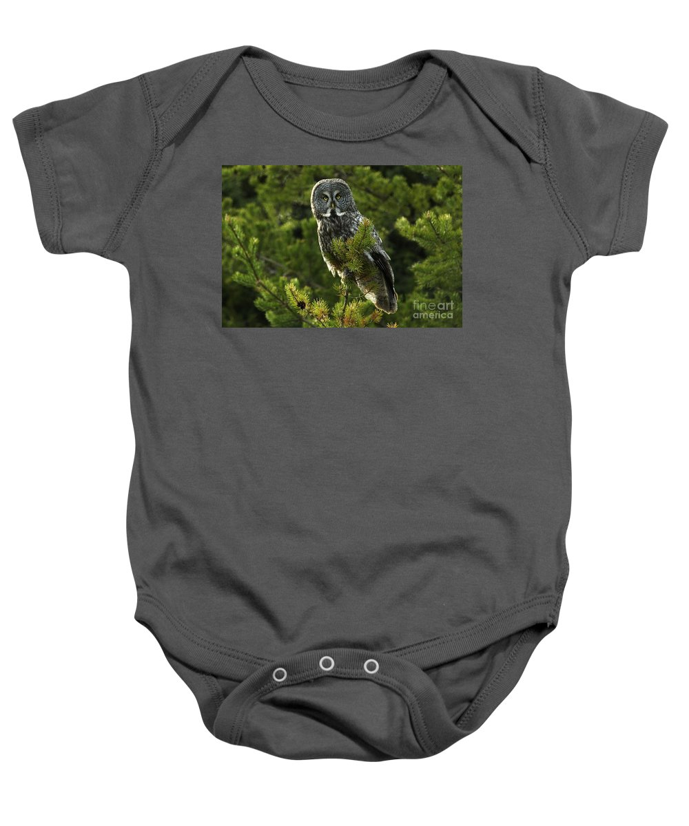 Owl Baby Onesie featuring the photograph Great Grey Owl On The Hunt by Bob Christopher