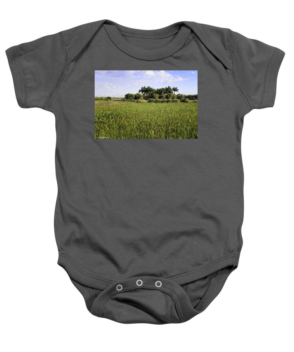 Green Cay Baby Onesie featuring the photograph Green Cay Wetlands by Fran Gallogly