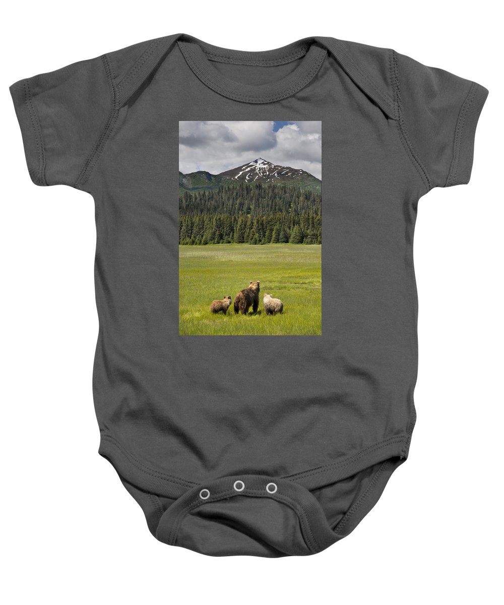 Richard Garvey-williams Baby Onesie featuring the photograph Grizzly Bear Mother And Cubs In Meadow by Richard Garvey-Williams