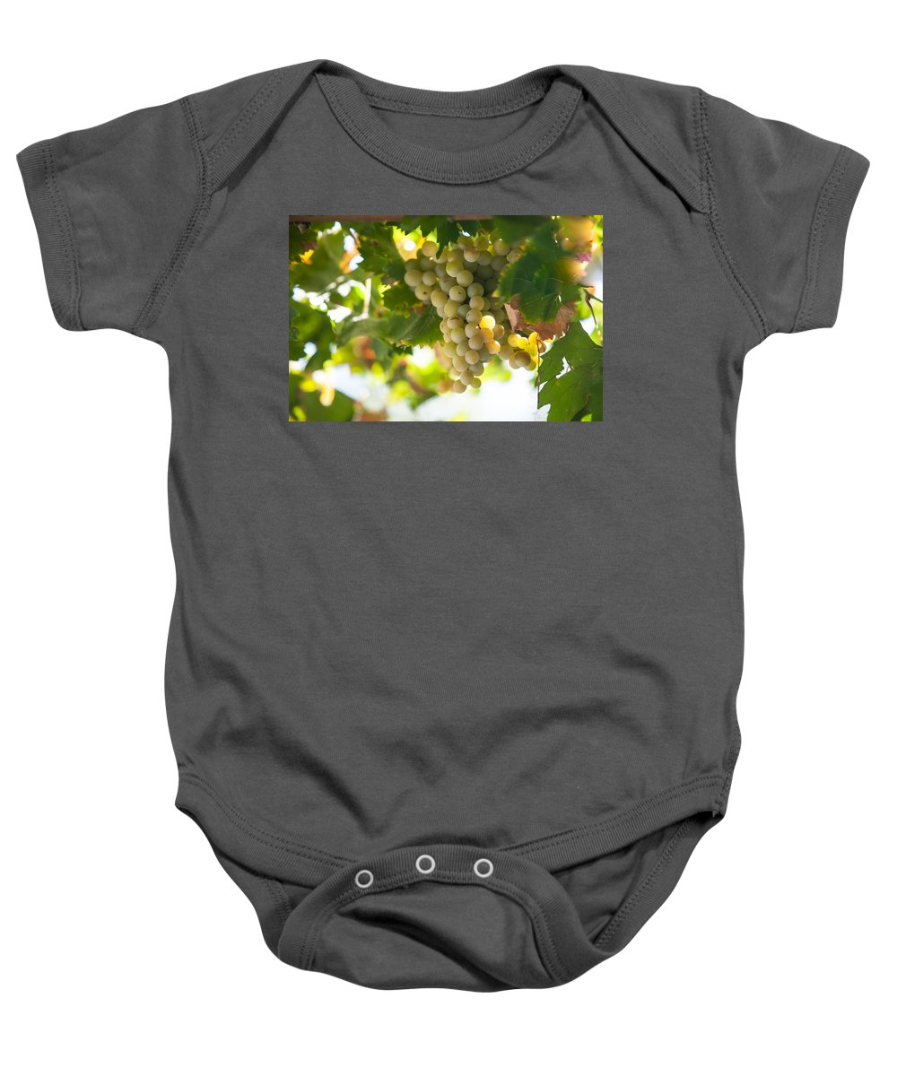 Grape Baby Onesie featuring the photograph Harvest Time. Sunny Grapes Iv by Jenny Rainbow