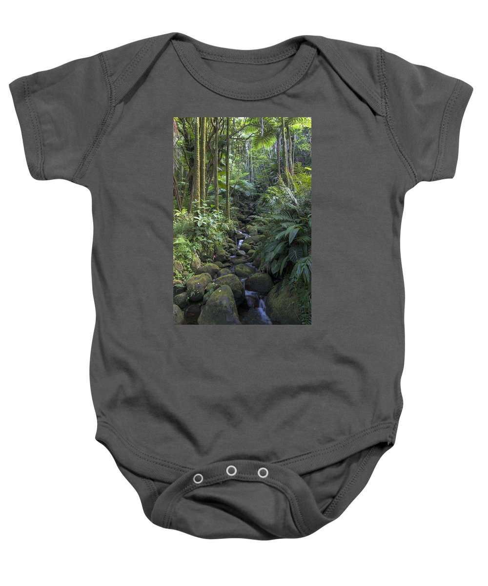 Hawaii Baby Onesie featuring the photograph Hawaiian Stream by Mike Herdering
